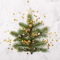 Decorazioni natalizie sostenibili